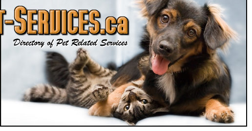 Cat & Dog Services
