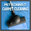 Pet Stains Ottawa Carpet Cleaning